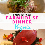 The Farmhouse at Veritas is not only a bed and breakfast, but also a great restaurant for dinner. The Farmhouse is a farm to table, fine dining restaurant in the heart of Virginia's wine country in Charlottesville.