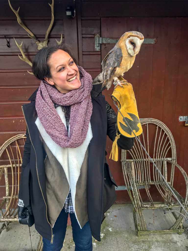 A woman smiling and looking at an owl after a unique and fun falconry experience at Dromoland Castle.