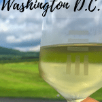 There are countless day trips from Washington D.C. that both locals and tourists should experience. From drinking wine in Charlottesville to watching a sports event in Philly, and hiking at Shenandoah National Park, there is something for everyone to enjoy just outside of Washington D.C.