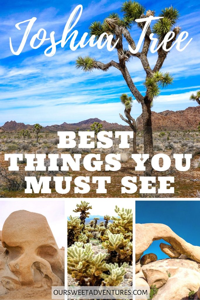 """A photo collage of four pictures - Joshua Trees, Skull Rock, Cholla Cactus, and Arch Rock with text overlay """"Joshua Tree Best Things You Must See""""."""