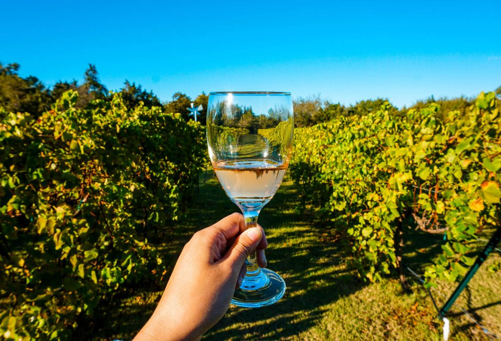 A glass of blush wine in vineyards at TF Vineyard & Winery.