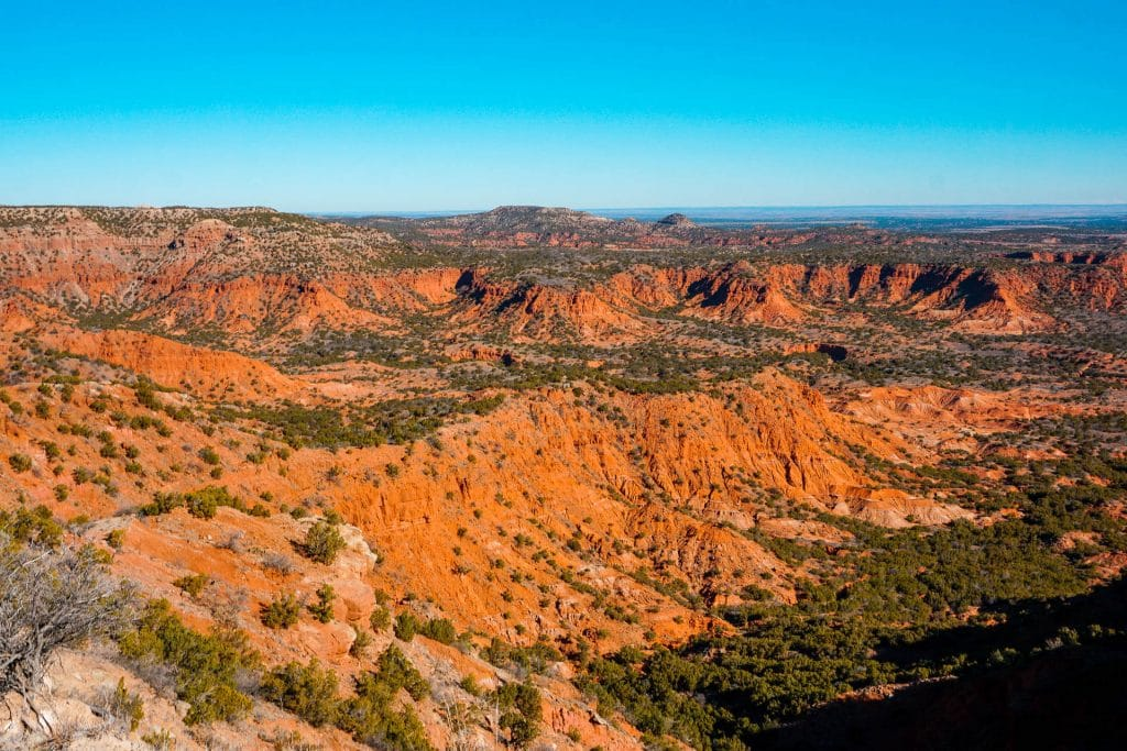 Stunning red canyons with green vegetation on the canyons floors. Hiking is one of the best things to do in Caprock Canyons State Park because you are rewarded with  gorgeous views like this one from Haynes Ridge Overlook.
